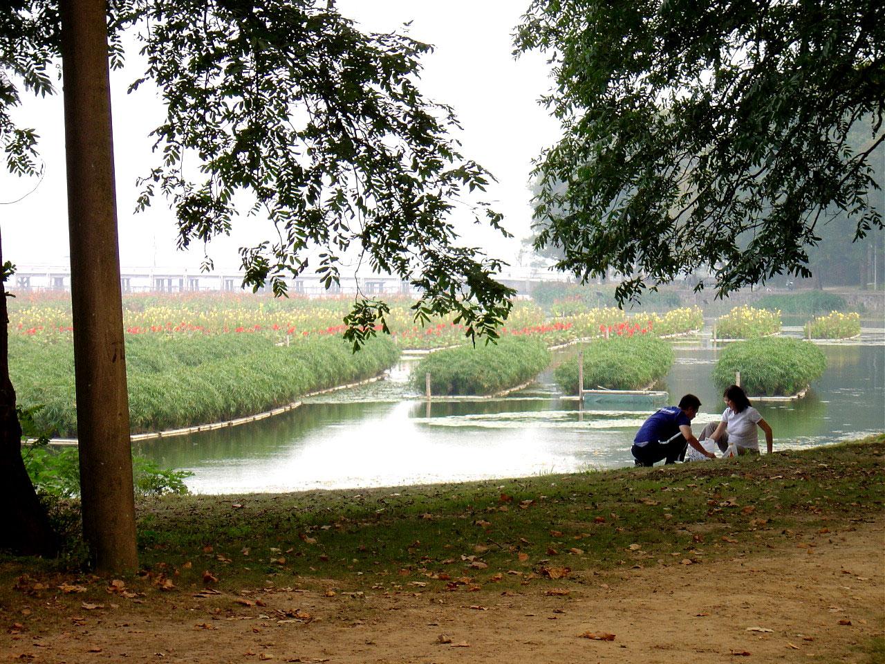 Floating-wetlands